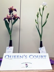 Queens Court, Teeny Bopper, Silver Ice